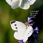 Butterflies - Cabbage White - Enjoyed The Togetherness Art Print