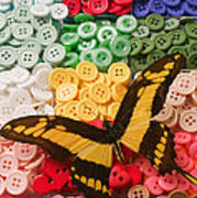 Butterfly And Buttons Art Print