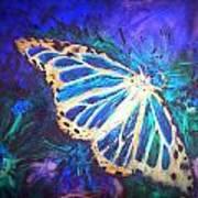 Butterfly Beauty 2 Art Print