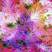 Cabbage Moon Art Print