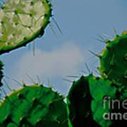 Cacti Junkie Art Print
