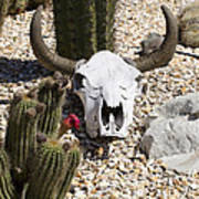 Cactus And Cow Skull Art Print