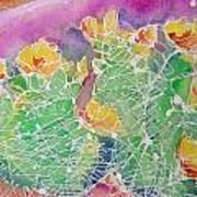 Cactus Color Art Print