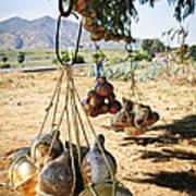 Calabash Gourd Bottles In Mexico Art Print by Elena Elisseeva