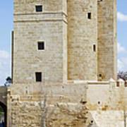 Calahorra Tower In Cordoba Art Print
