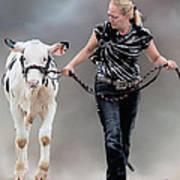 Calf Competition Art Print