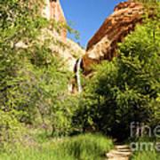 Calf Creek Falls Canyon Art Print