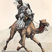 Camel & Rider Art Print