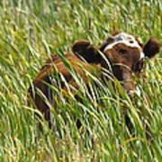 Camo Cow Art Print