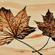 Canadian Leaf Art Print by Marsha Heiken