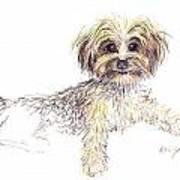 Canine Cutie Art Print