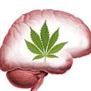 Cannabis Use, Artwork Art Print by Victor De Schwanberg