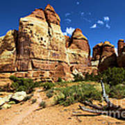 Canyonlands Chesler Park Art Print