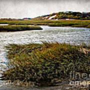 Cape Cod National Seashore Art Print
