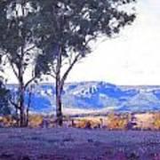 Caperty Valley Australia Art Print