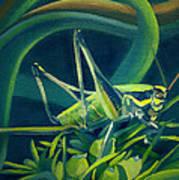 Card Of Mister Grasshopper Art Print