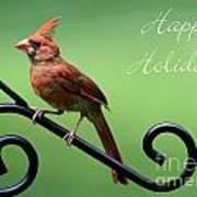 Cardinal Holiday Card Art Print