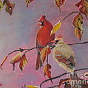 Cardinals In Falls Art Print