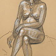 Carina Seated Art Print