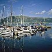 Carlingford Yacht Marina, Co Louth Art Print