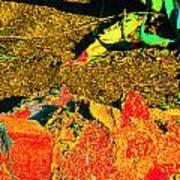 Carlos Visits Don Juan In The Desert Art Print