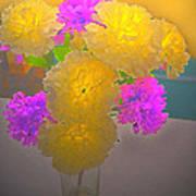 Carnation Glow Art Print