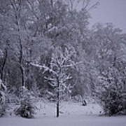 Carolina Snowfall Art Print