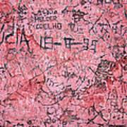 Carvings On Wall Art Print by Carlos Caetano