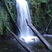 Rainforest Waterfall Cascades Art Print