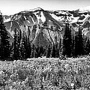 Cascade Mountain Range Art Print