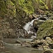 Cascades Happy Trail 9128 Art Print
