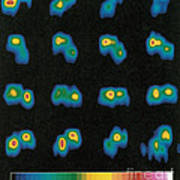 Castalia Asteroid Sequence, False-color Art Print by Science Source