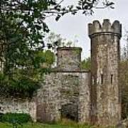 Castle Near Upper Lake Kilarney Irelnad Art Print