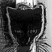Cat Coming In Art Print