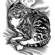 Cat Grooming Its Fur, Artwork Art Print by Bill Sanderson