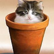 Cat In A Pot Art Print