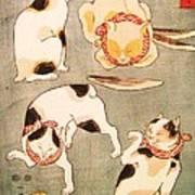 Cat Poses Art Print