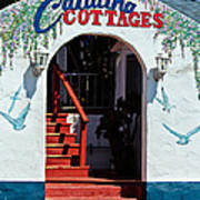 Catalina Cottages Art Print