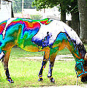 Catch A Painted Pony Art Print