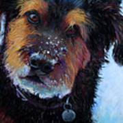 Catching Snowballs Art Print