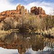 Cathedral Rock Reflections Landscape Art Print by Darcy Michaelchuk