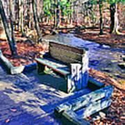 Catoctin Bench Art Print