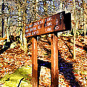 Catoctin Trail Sign Art Print