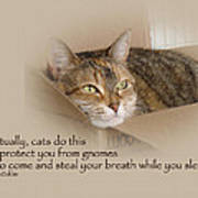 Cats Protecting You From Gnomes - Lily The Cat Art Print