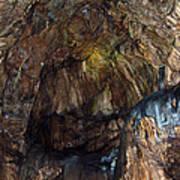 Cave01 Art Print by Svetlana Sewell