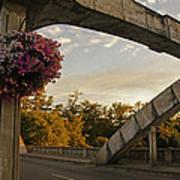 Caveman Bridge Arch And Flowers Art Print