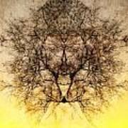 Celestial Sunrise Art Print