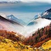 Central Balkan National Park Art Print