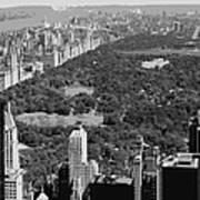 Central Park Bw6 Art Print