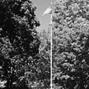 Central Park Flag In Black And White Art Print